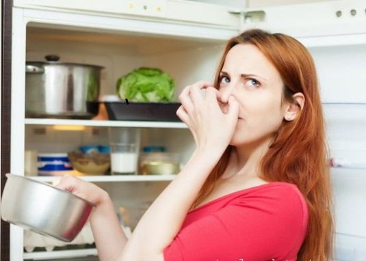 Khử mùi hôi cho tủ lạnh